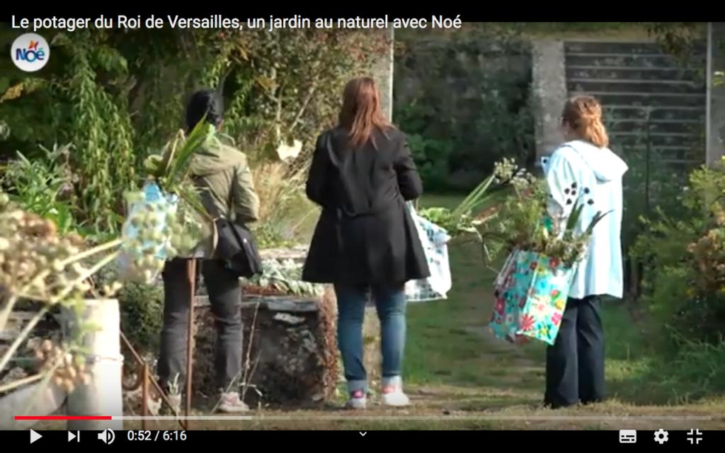Le potager du Roi de Versailles : un jardin au Naturel